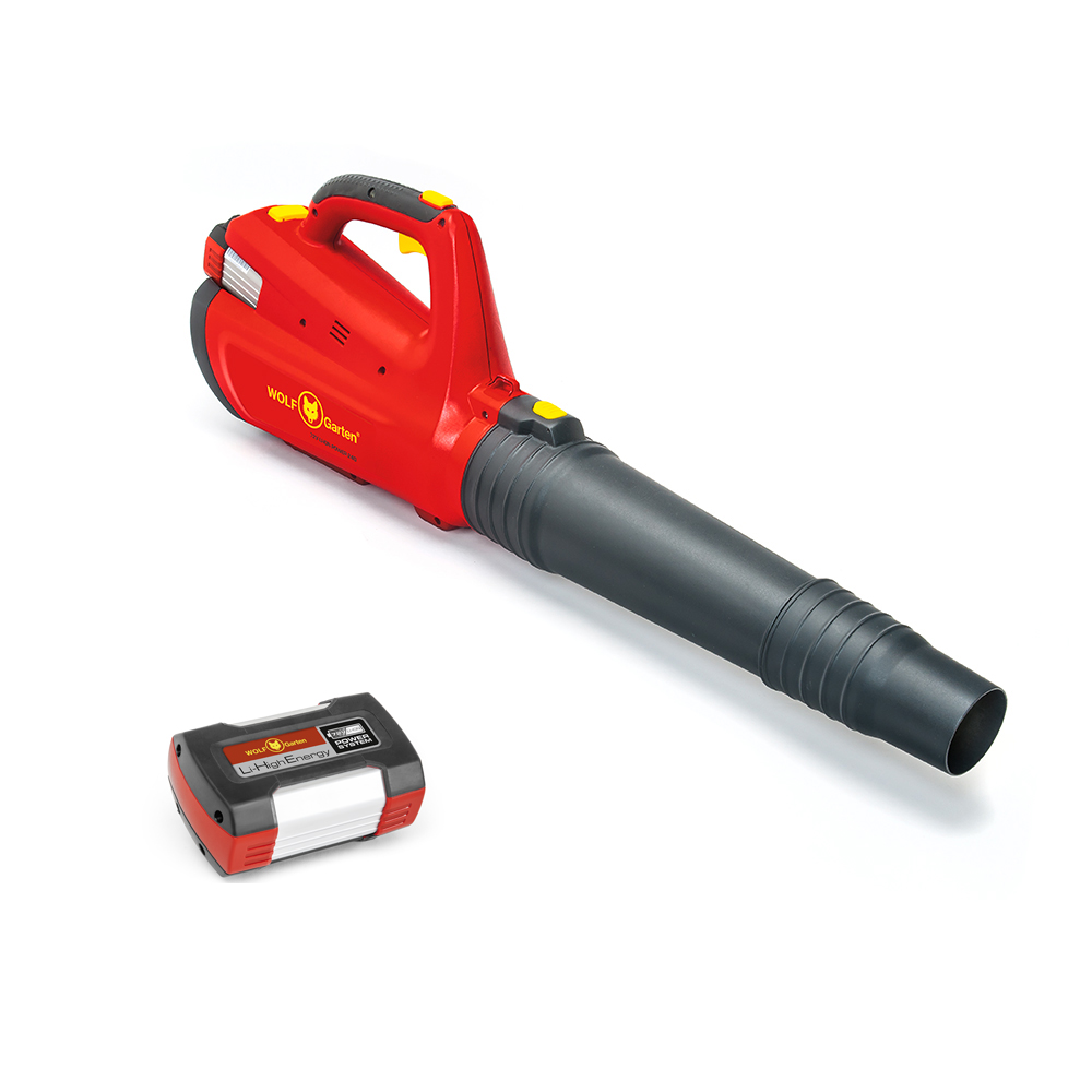 72V Li-ION Power 24B Leaf Blower (Set)